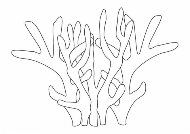 Free coloring and drawings Easy coral Coloring page