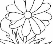 Coloring pages Easy daisy
