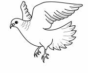 Coloring pages Beautiful dove in flight