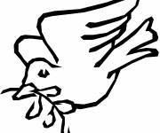 Coloring pages Dove and olive branch in black and white