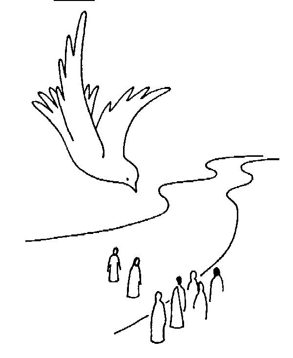 Free coloring and drawings Dove baptism Coloring page