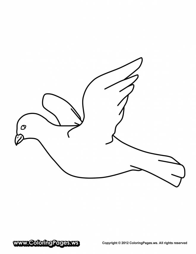 Free coloring and drawings Easy dove Coloring page
