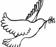 Free coloring and drawings Peace and Dove Coloring page