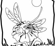 Coloring pages Dragonfly 59