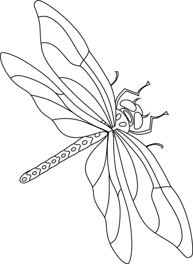 Free coloring and drawings Dragonfly 6 Coloring page