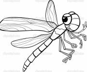 Coloring pages Dragonfly 62