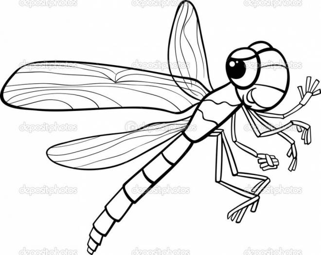 Free coloring and drawings Dragonfly 62 Coloring page