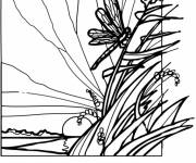 Coloring pages Dragonfly 66
