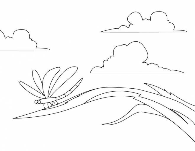 Free coloring and drawings Dragonfly 73 Coloring page