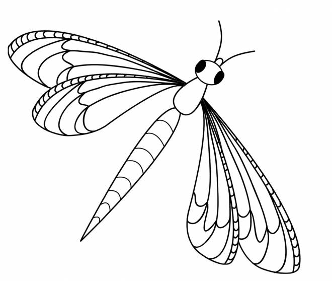 Free coloring and drawings Dragonfly and kids Coloring page