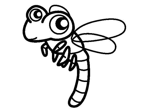Free coloring and drawings Dragonfly easy to download  Coloring page