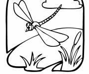 Coloring pages Dragonfly easy wallpapers