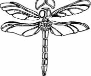 Coloring pages Dragonfly laughing