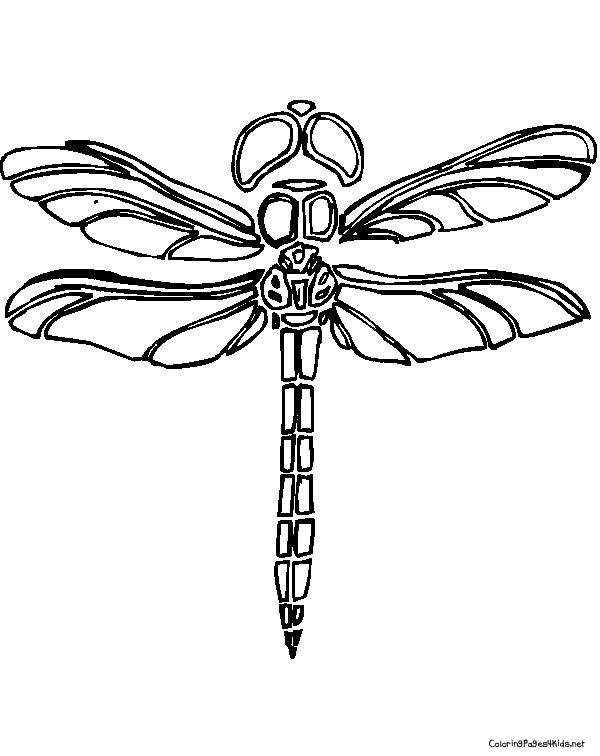 Free coloring and drawings Dragonfly laughing  Coloring page