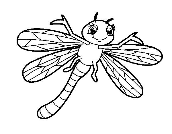 Free coloring and drawings Dragonfly simple online Coloring page