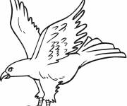 Free coloring and drawings A beautiful eagle in flight Coloring page