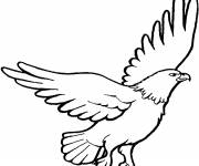 Free coloring and drawings Eagle in black and white Coloring page
