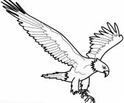 Free coloring and drawings Eagle in the air Coloring page