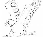Free coloring and drawings Eagle prepares to attack Coloring page