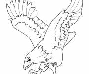 Free coloring and drawings Eagle that opens its wings Coloring page