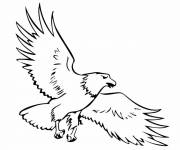 Free coloring and drawings Eagle vector Coloring page
