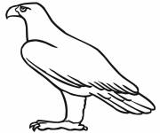 Free coloring and drawings Simple eagle Coloring page