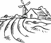 Coloring pages Easy fields