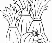 Coloring pages productive fields