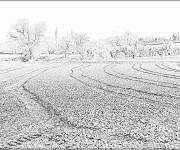 Coloring pages Realistic fields to print