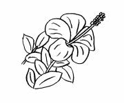 Coloring pages A beautiful flower
