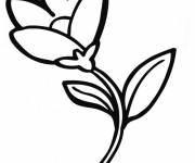Coloring pages Almost open flower