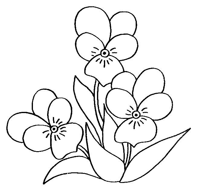 Free coloring and drawings Black pencil flower Coloring page