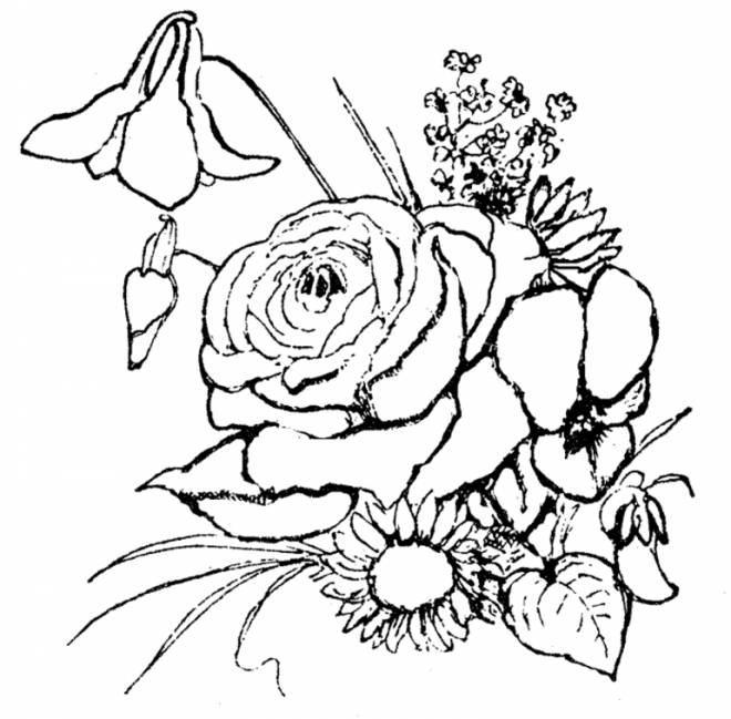 Free coloring and drawings Bouquet of flowers Coloring page