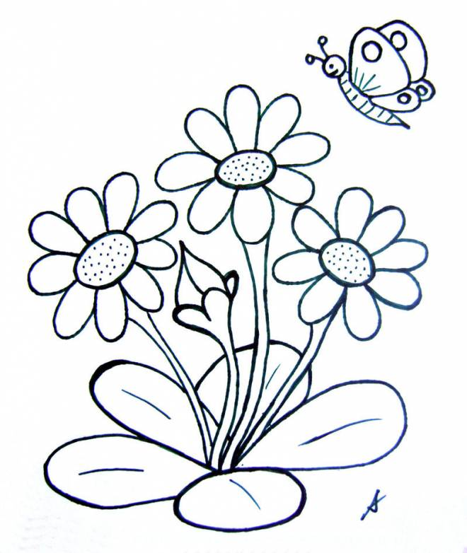Free coloring and drawings Butterfly and Flowers in Spring Coloring page