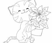 Coloring pages Flower and Cat