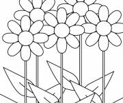 Coloring pages Flower coloring
