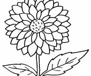 Coloring pages Flower for child