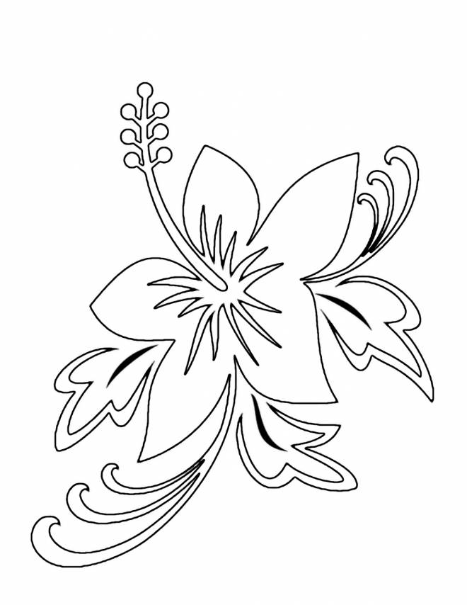 Free coloring and drawings Flower for decoration Coloring page