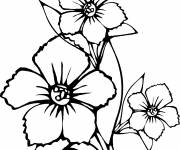 Free coloring and drawings Flower in black Coloring page