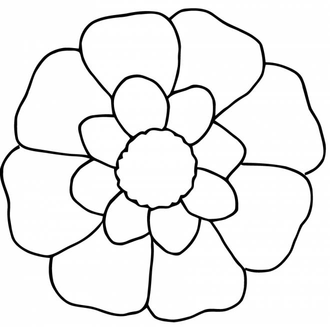 Free coloring and drawings Flower in white and yellow Coloring page