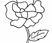 Coloring pages Flower Theme