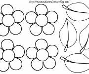 Coloring pages Flowers and petals