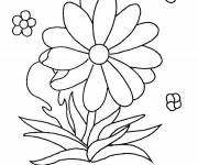 Coloring pages Flowers everywhere
