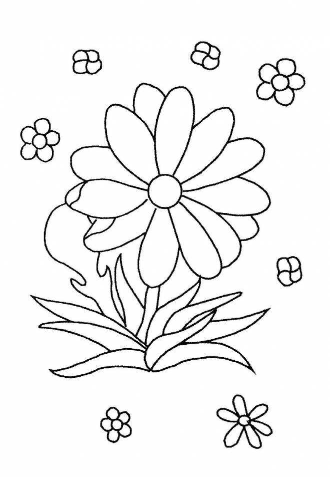 Free coloring and drawings Flowers everywhere Coloring page