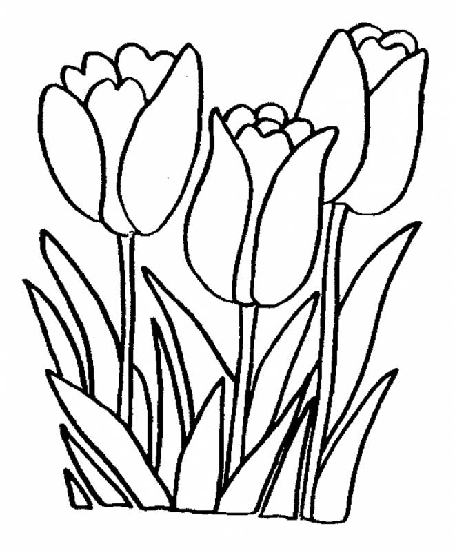 Free coloring and drawings Flowers online Coloring page