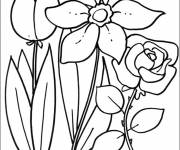 Free coloring and drawings Spring Flowers Coloring page