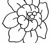 Coloring pages Stylized lotus flower