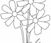 Coloring pages Three Flower Adults