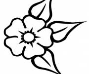 Coloring pages Tiare flower