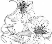 Coloring pages White flower for child
